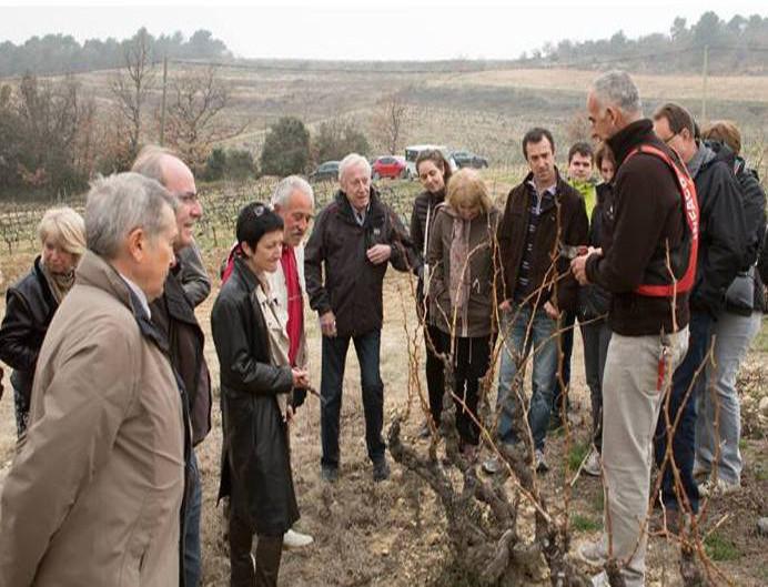 Parrainage de pieds de vignes au Domaine Jaume