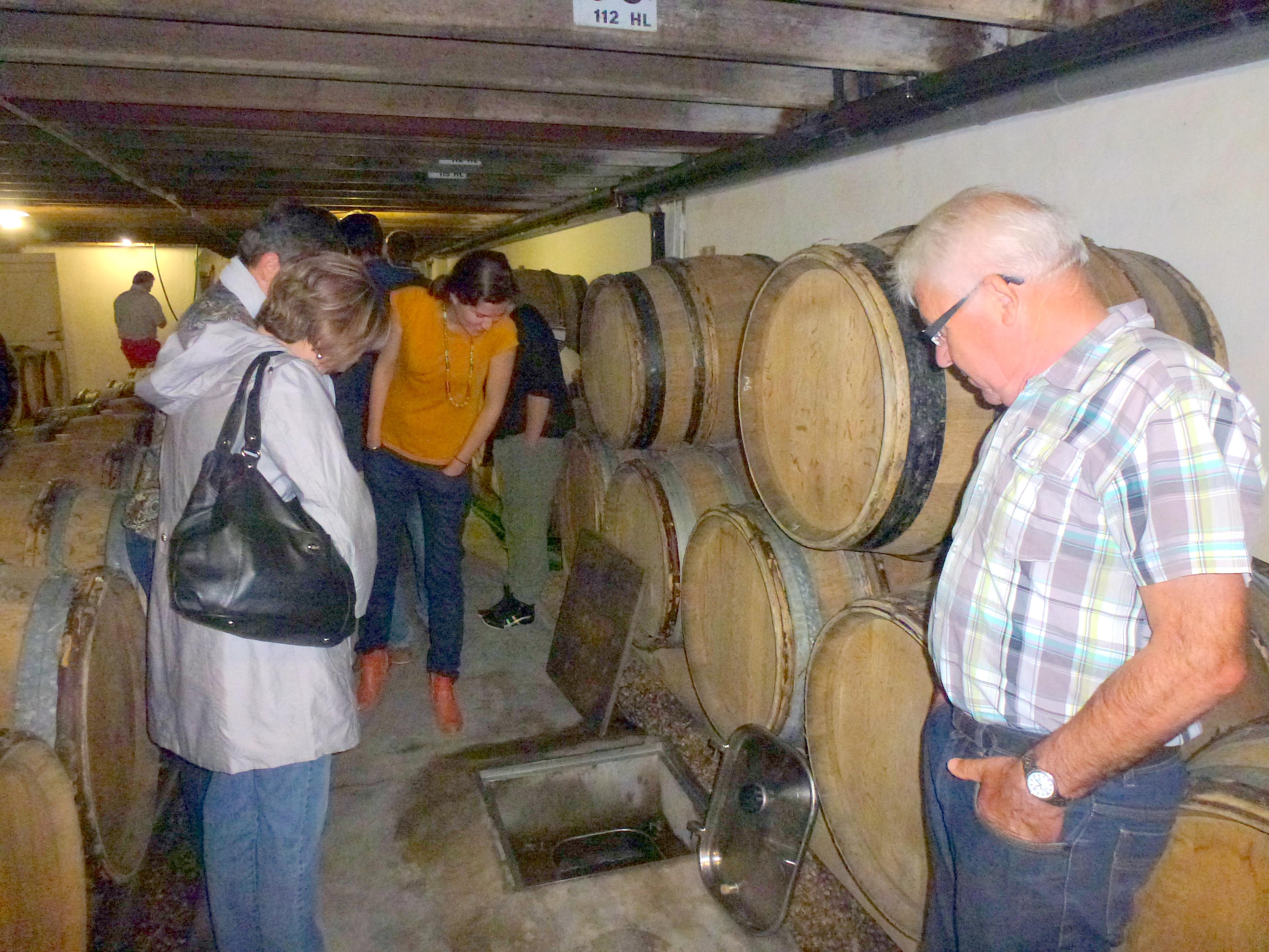 Parrainage de pieds de vignes au Domaine Menard Gaborit