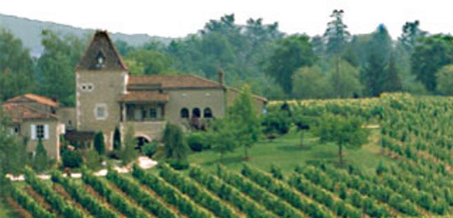 Parrainage de Pieds de Vignes au Château St Sernin