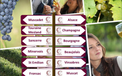 Les chiffres clés du vin.