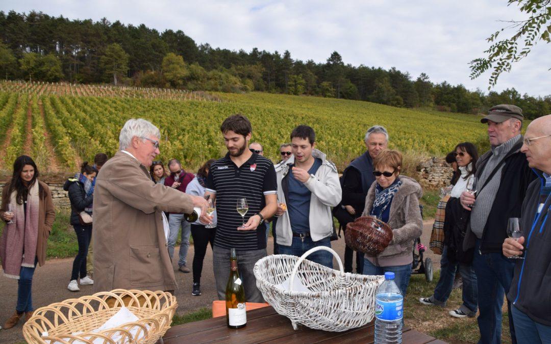 Journée vinification en Bourgogne.