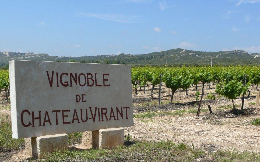 Découverte viticole en Provence