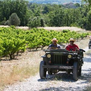 Vignobles en Jeep & découverte des vins