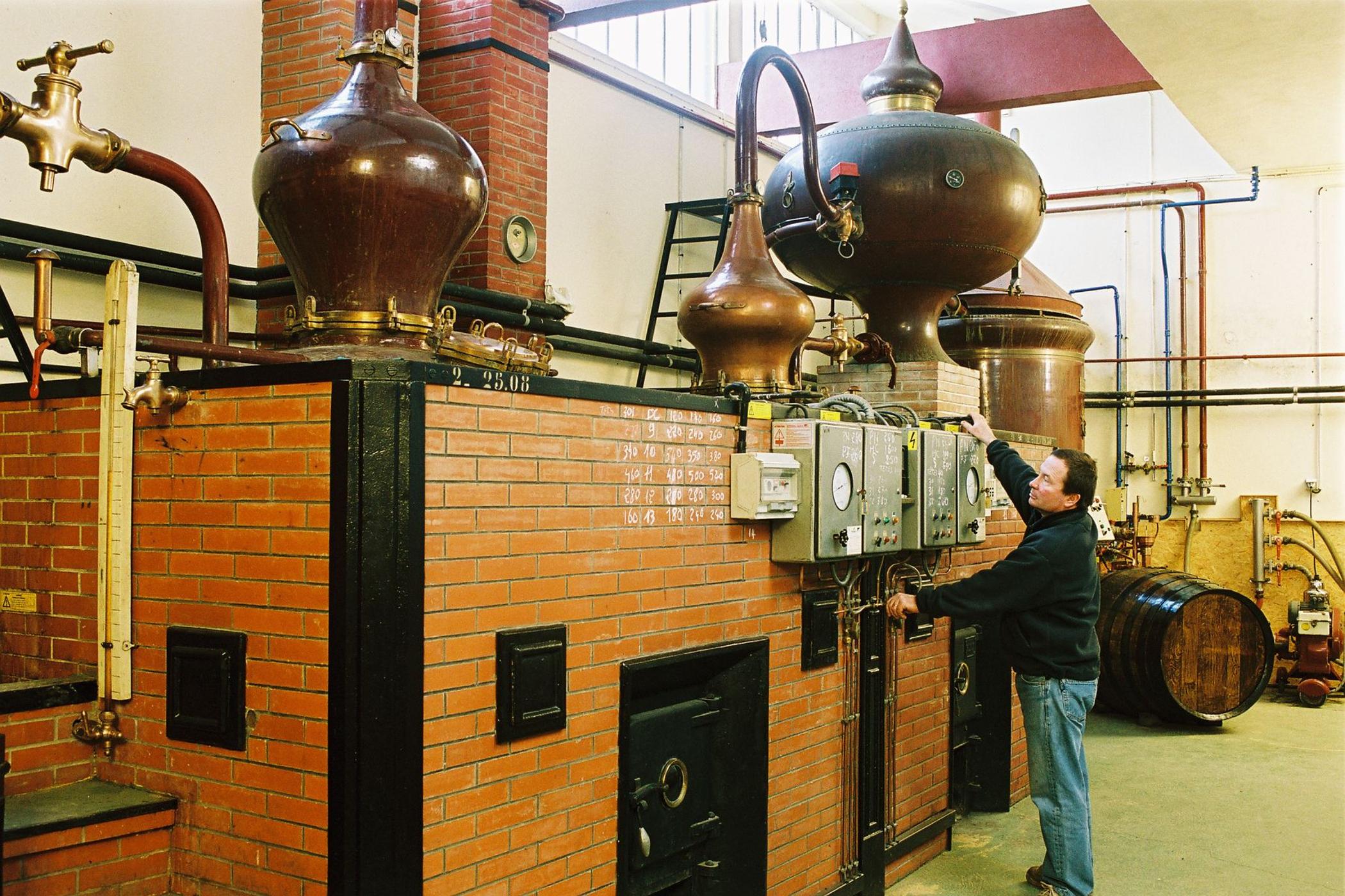 Colombar Covigneron visite chai cognac
