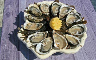 Quel vin servir avec les huîtres ?