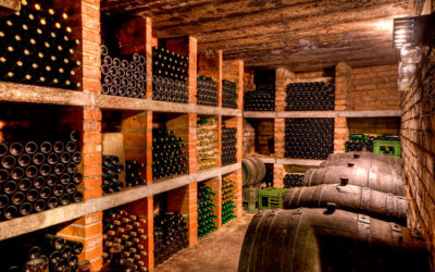 Les qualités d'une bonne cave à vin
