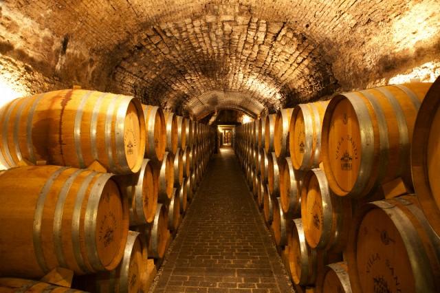 Le vin et le bois