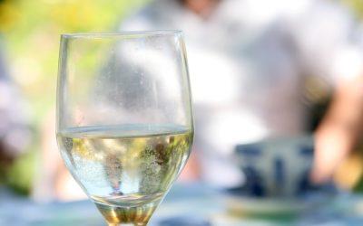 Le vin avec ou sans glaçon ?