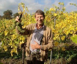 Belgique : parrainez des vignes au Domaine du CHENOY