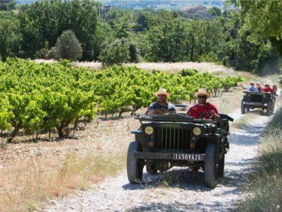 Vignoble de Vinsobres en Jeep & Découverte des vins.