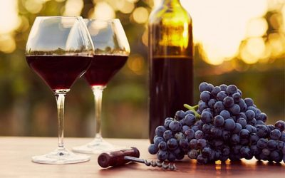 Vin nouveau et vin primeur, quelle différence?