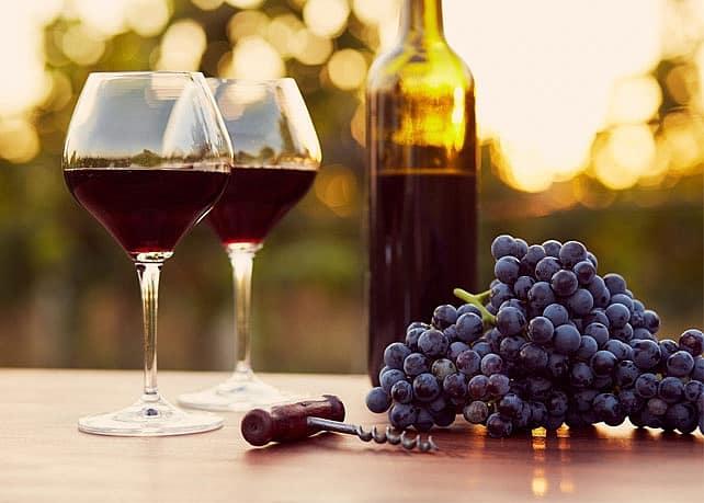 vin nouveau vin primeur