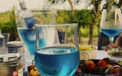 Découvrez le vin bleu