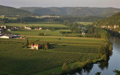 AOC Cahors : le black wine du Sud-Ouest