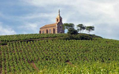 AOC Fleurie, un vin du Rhône avec une histoire millénaire