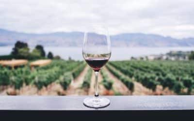 Crise sanitaire :  les viticulteurs lancent un appel aux étudiants