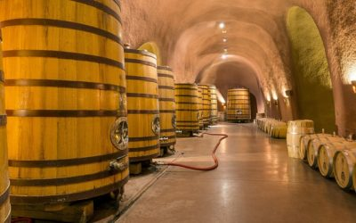 Les vignerons limitent le bois pour l'élevage de leurs vins