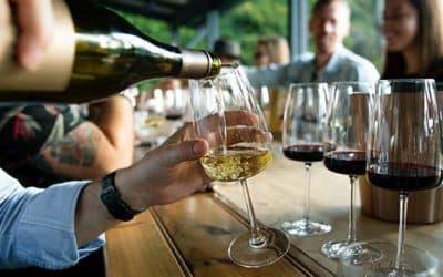 Différence entre appellation et cépage, le vin n'aura plus de secret pour vous !